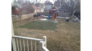 Rink keeps grass